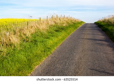 country road in the farmland