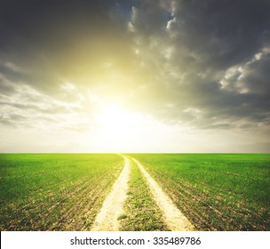 Country road in field with green grass