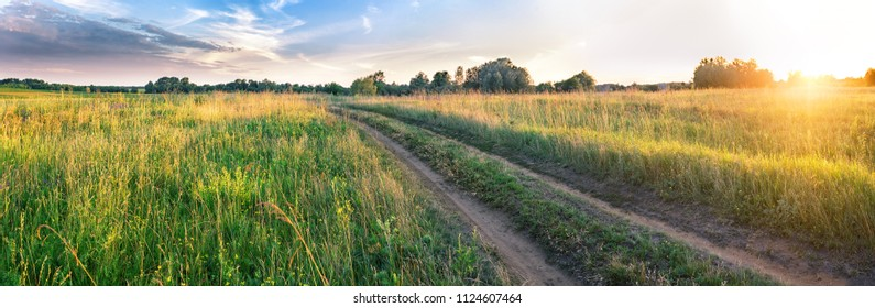 Country road in the field. Summer landscape. Panorama. The concept of travel and freedom.