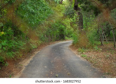 A country road in focus and out of focus in Boerne,Texas/USA-October 13,2019