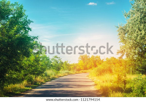 a country road with green trees and the blue sky near the forest on a bright summer day. countryside. nature. beautiful landscape for design