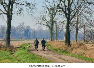 country road with hunters and their dogs on the go