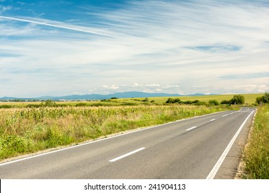 Country Road Landscape In Summer