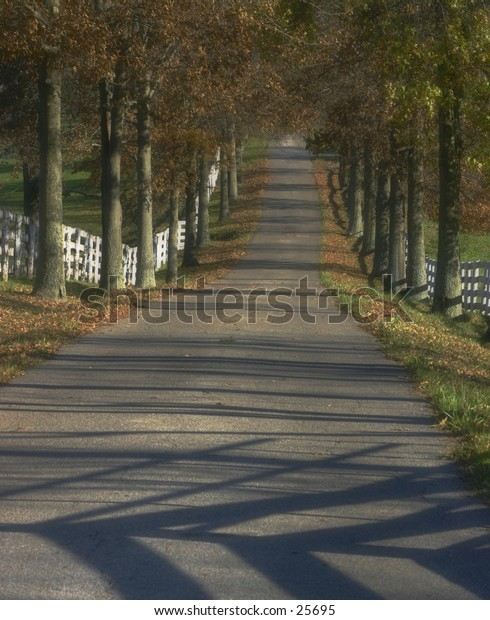 Country road in late fall.Kentucky.