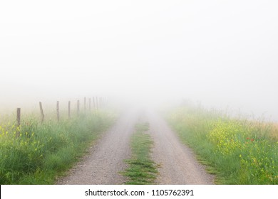 Country road leading into fog