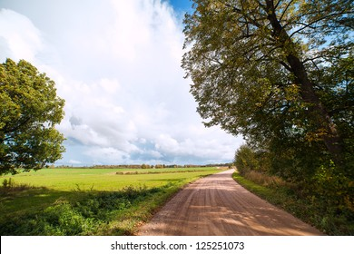 Country road in nice summer day.