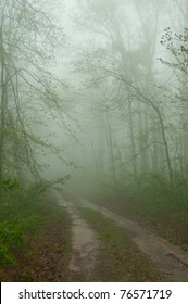 A country road on top of one of the highest peaks in the Ozarks, White Rock Mountain.