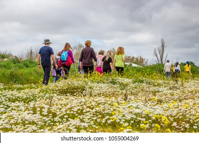 Country Road in Portugal with vegetation on both sides. Group of walkers. Field with many flowers. People walking on a path.