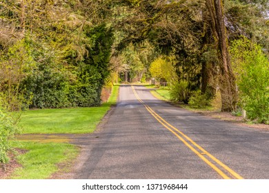 Country road in rural driving Washington state.