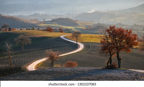 Country road in San Severino Marche, Le Marche, Italy