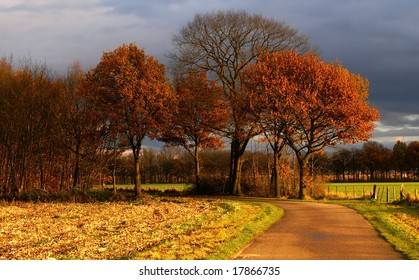 country road to some nice colored autumn trees  with dark clouds in a rural environment