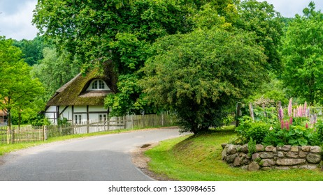 Country road in spring with thatched house and flowering trees and lupins