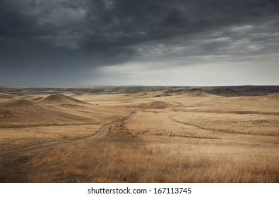 Country road in the steppe during gloomy weather