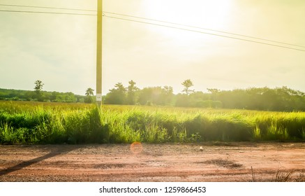 Country road in Thailand with electric pole at sunrise