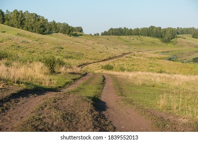 Country road. Road through the field. Dusty road. Walking tour. Walk near the forest. Village road