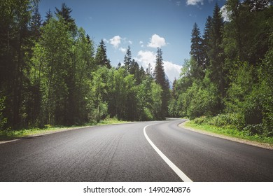 country road through forest. summer.