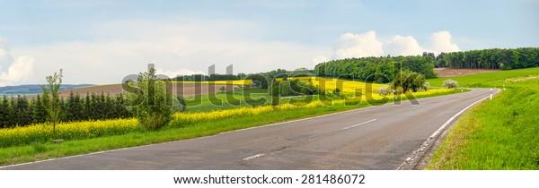 Landstraße durch hügelige deutsche Landschaft und blühendes Rapsfeld