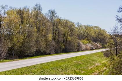 Country road in Vomb, Skane Sweden