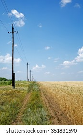 Country road, wheat field, power lines  and blue sky