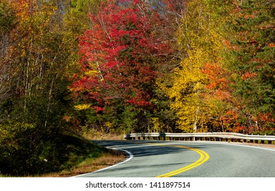 A country road winds through a forest of autumn colors near Stowe, VT
