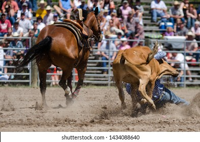 Country Rodeo Steer Wrestling Cowboy