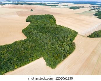 Country in Saint-Cyr-les-Colons, Yonne, Bourgogne-Franche-Comte, France