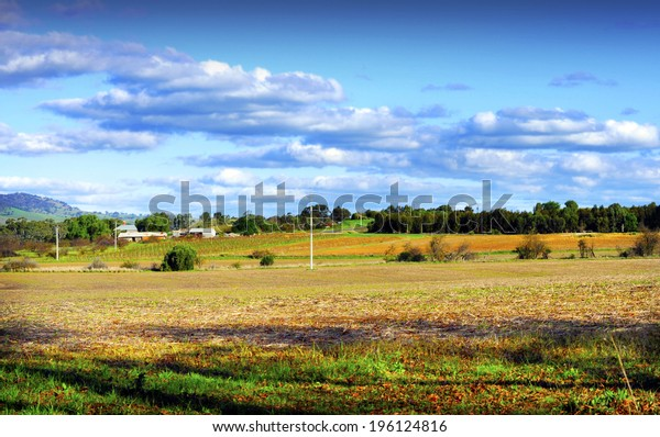 Country scene with rows of grape vines in background. Taken in Autumn Fall at Barossa Valley, South Australia.