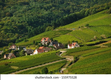 country scene as viewed from Kaysersberg Chateau
