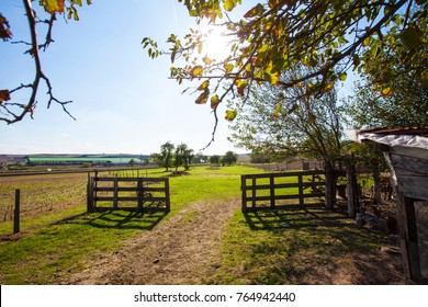 country side scene in the sun light