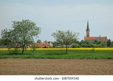 Country Slovakia, small town Vrable. The fields and trees in the foreground, in the background are the church and the houses.