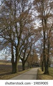 Landweg im späten Winter