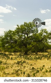 Country Windmill in West Texas - Prickly Pear cactus and sun dried weeds with Mesquite and Live Oak Trees in the foreground.  Blue sky with scattered clouds in the background.