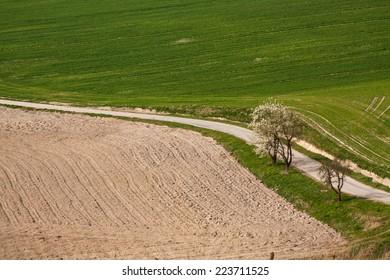 countryroad in farmland