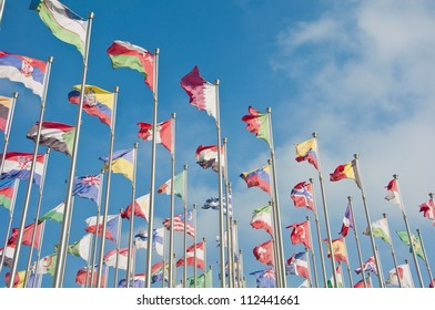 Country's flag in the world