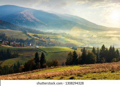 countryside beautiful autumn sunrise in mountains. weathered grass and pine trees. village among distant grassy hills in haze. wonderful sunny weather