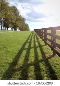 Countryside, green pastures of horse farms