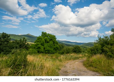 Countryside at high noon. Rural scenery with trees and fields on the rolling hills at the foot of the ridge.