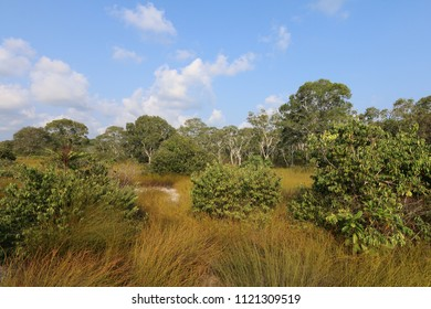 Countryside, Koh Ta Kiev Island, Cambodia