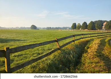 Countryside landscape with green field pastures in summer