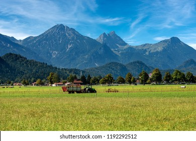 Countryside Landscape with a green meadow and Alps near the Schwangau and Hohenschwangau village, Ostallgau district, Fussen, Bavaria, Germany, Europe