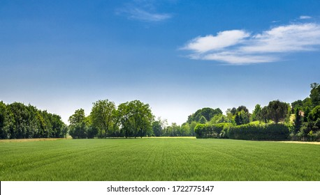 Countryside landscape. Italy. Beautiful typical countryside summer landscape. - Shutterstock ID 1722775147