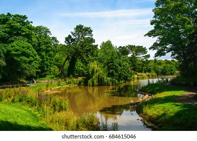 Countryside landscape. Lake, summer time