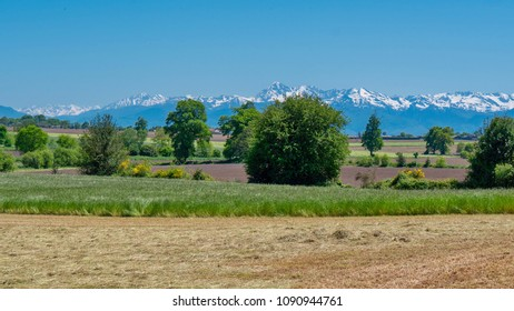 a countryside landscape with Pyrenees mountain range in the background
