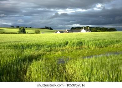 Countryside landscape at sunny day. Aberdeenshire, Scotland, UK.