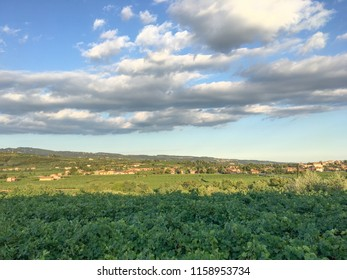 Countryside landscape, Vineyards in Valpolicella, Province of Verona, northern Italy, Italy. Landscape with clouds and vineyards, in the Valpolicella wine region. View in the countryside of Bure