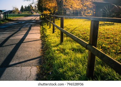 countryside in morning with warm light in Winterthur Switzerland