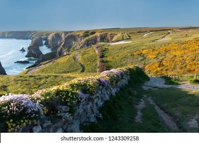 Countryside near Bedruthan Steps in Cornwall United kingdom.