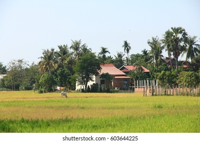 Countryside near Siem Reap, Cambodia