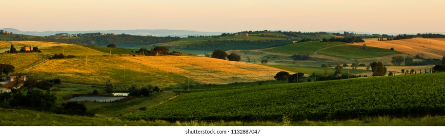 The countryside outside Montepulciano bathed in the morning light.
