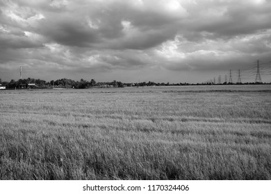 Countryside and overcast